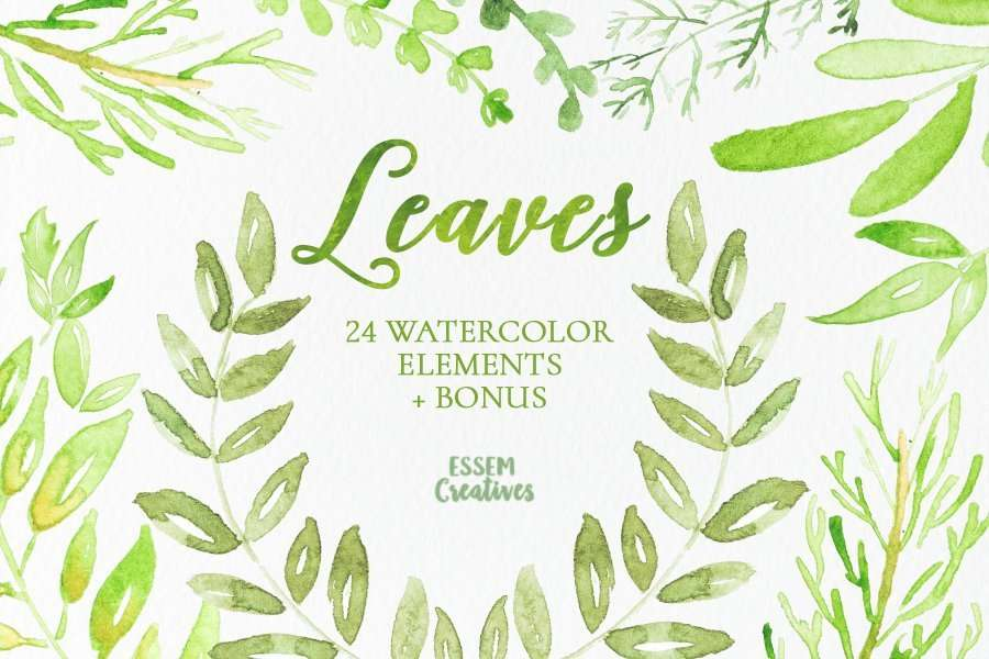 Watercolor leaves clip art set