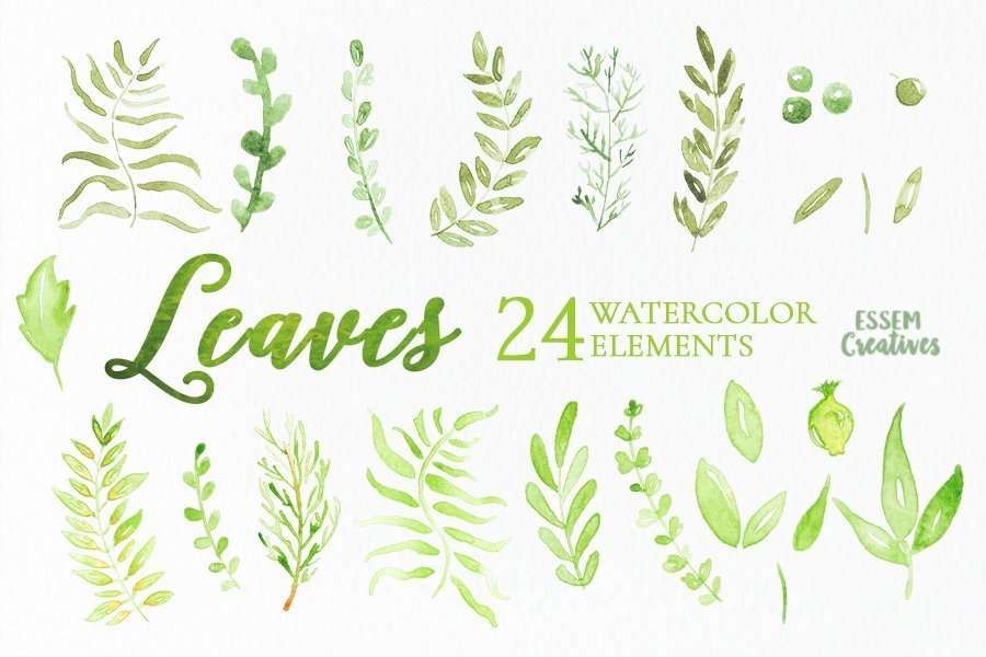 Watercolor Leaves Clip Art Set2 Essem Creatives