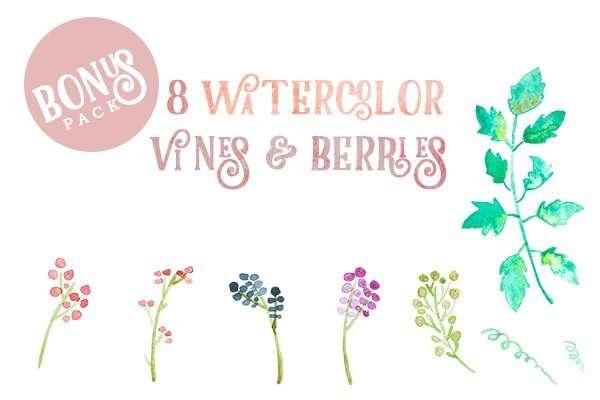 bonus watercolor berries and vines clip art