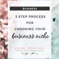 Choosing a business niche 3 step process