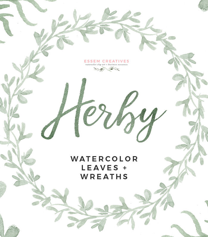 HERBY is a set of hand painted Watercolor Herbs Clipart set featuring paintings which look like sage, parsley, rosemary, cilantro and dill. This set includes, delicate, modern looking watercolour graphics in various neutral and muted shades painted in a delicate, painterly style. food centric designs, restaurant menus, printable kitchen art, dining room wall art, wedding menus, organic logo & branding, and more.