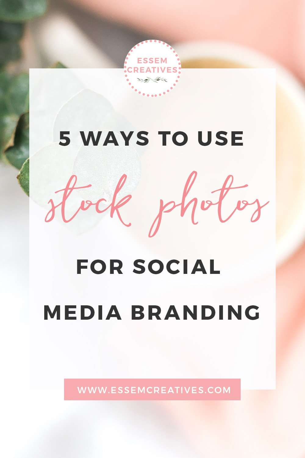 5 Ways to Use Feminine Stock Photos for Social Media Branding | Styled Stock Photography | Stock Photos for Bloggers | Cheap & Affordable Stock Images | Blog Branding Kit Photos | Social Media Tips | Grow Instagram Following | Blogging Tips for Beginners | You want to achieve a soft, pretty, feminine look for your social media branding but don't know the exact steps to get there. If that's you, then I've got you covered.