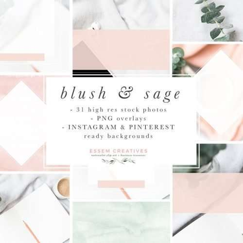 Blush and Sage Feminine Stock Photos and Social Media Branding Bundle
