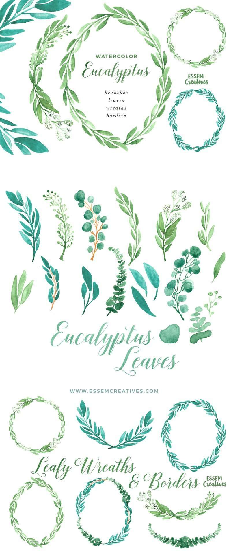 Watercolor Eucalyptus Clipart, Eucalyptus Wreaths Borders and Frames This is a set of hand painted Watercolor Eucalyptus Clipart featuring branches, wreaths, borders and frames. Eucalyptus is a super modern and trendy concept which are perfect for wedding invitations & save the date designs. Also perfect for logos & branding projects. This set includes, delicate, modern looking eucalyptus leaf graphics in stunning vibrant shades painted in a delicate, painterly style. Includes hues of sage green and teal. Click to check it out now >>
