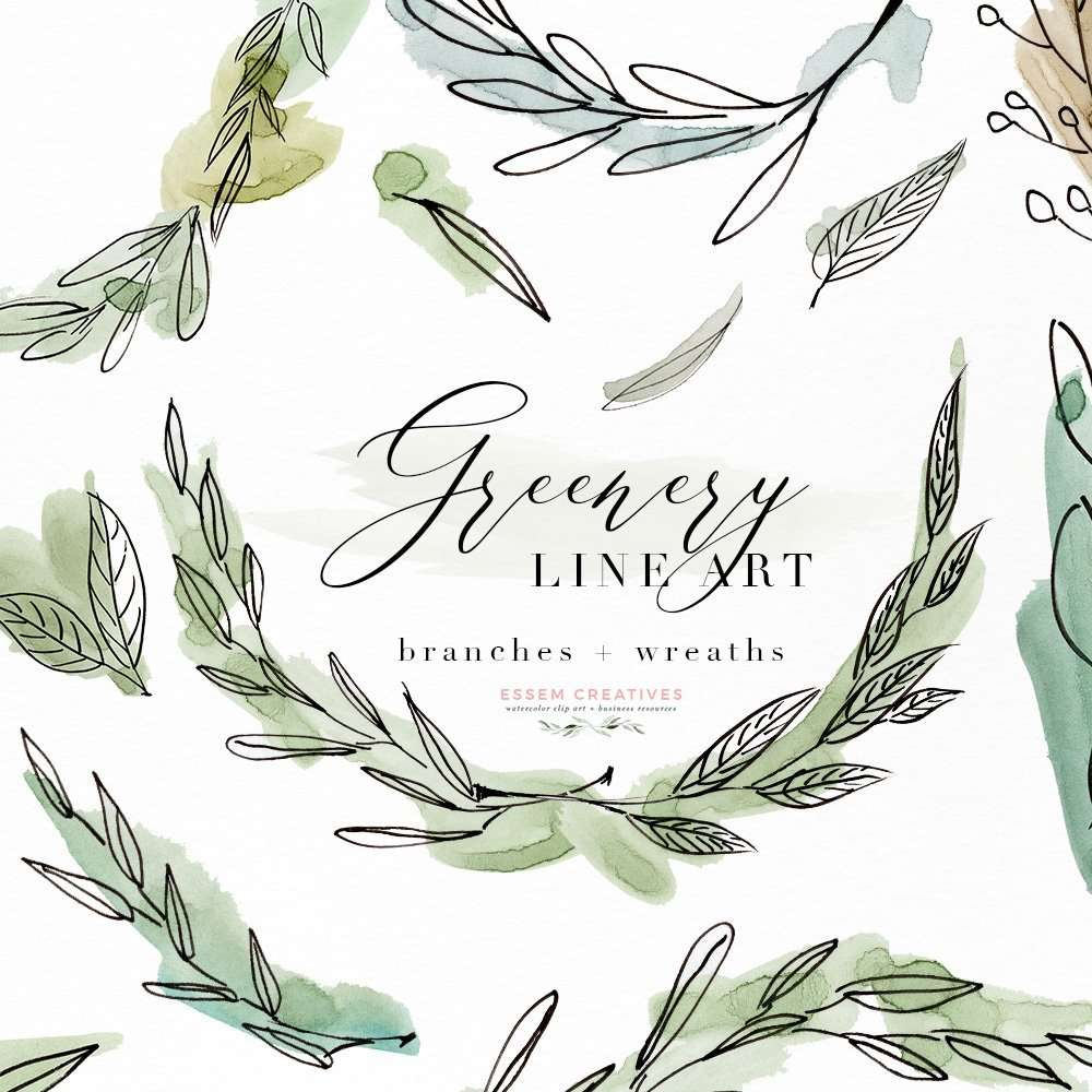 Greenery Line Art Watercolor Clipart Olive Eucalyptus Branches Tropical Fine Botanical Ink Graphics