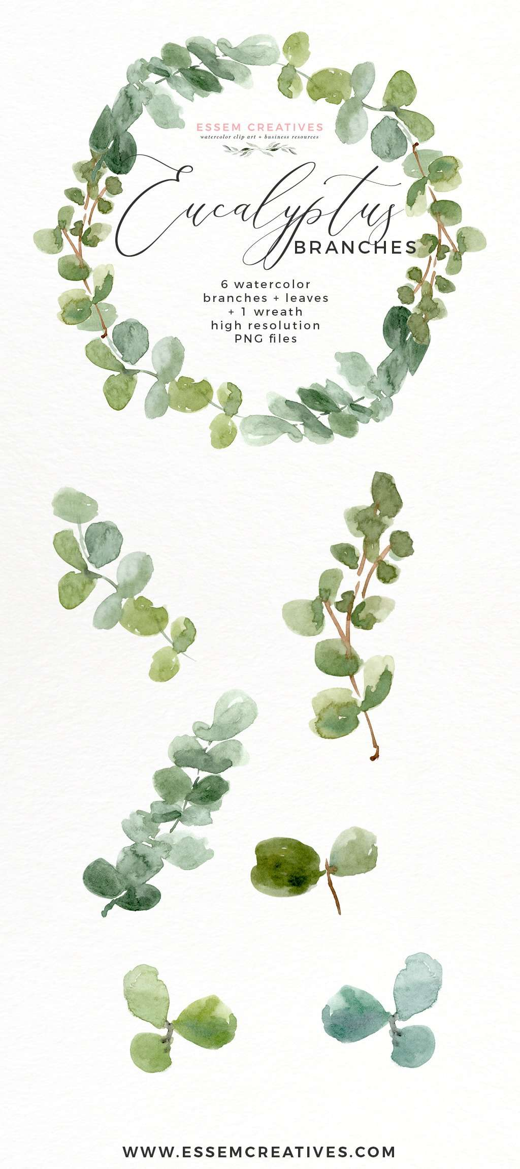 Watercolor Eucalyptus Wreath Branches Clipart PNG 1