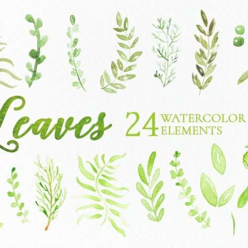 Watercolor leaves clipart, olive branches png, watercolor graphics for commercial use | Create gorgeous watercolor designs using these greenery clipart graphics which come as instant downloads. Click to see more>>