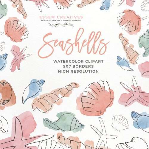 Watercolor Seashells Clipart | Under the Sea Birthday Party | Invitation Decorations Baby Shower Nursery