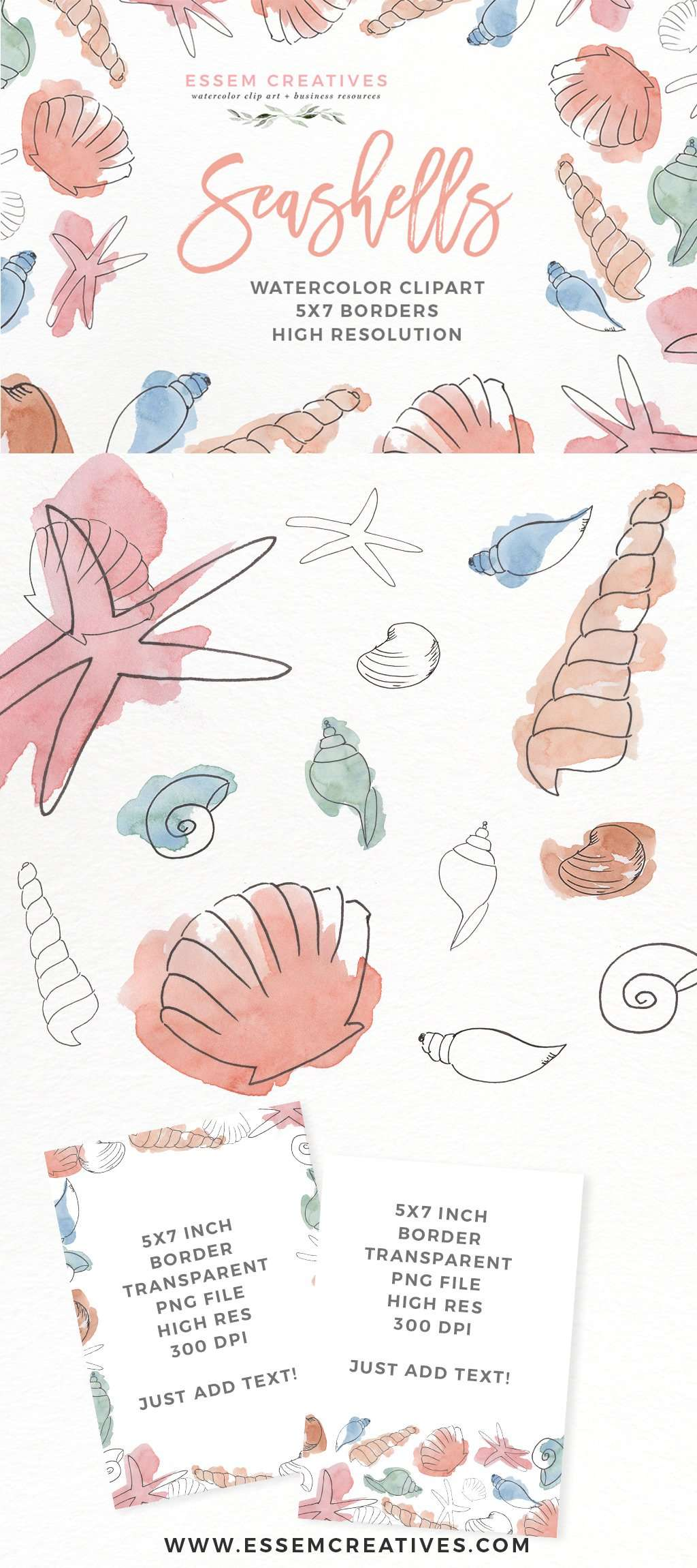 Watercolor Seashells Clipart | Under the Sea Birthday Party | Invitation Decorations Baby Shower Nursery by Essem Creatives | Get started on your design project right away. Click to see>>