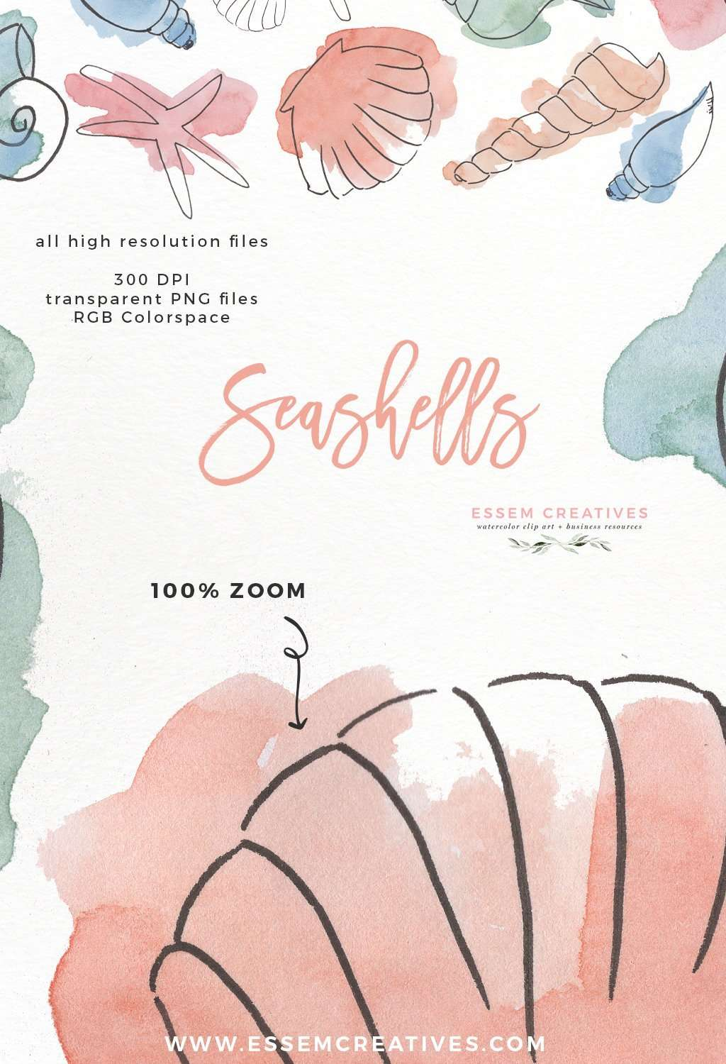 Watercolor Seashells Clipart Under The Sea Birthday
