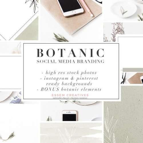 Botanic Social Media Branding Kit | Feminine Minimal Stock Photos with Watercolor Leaf Accents