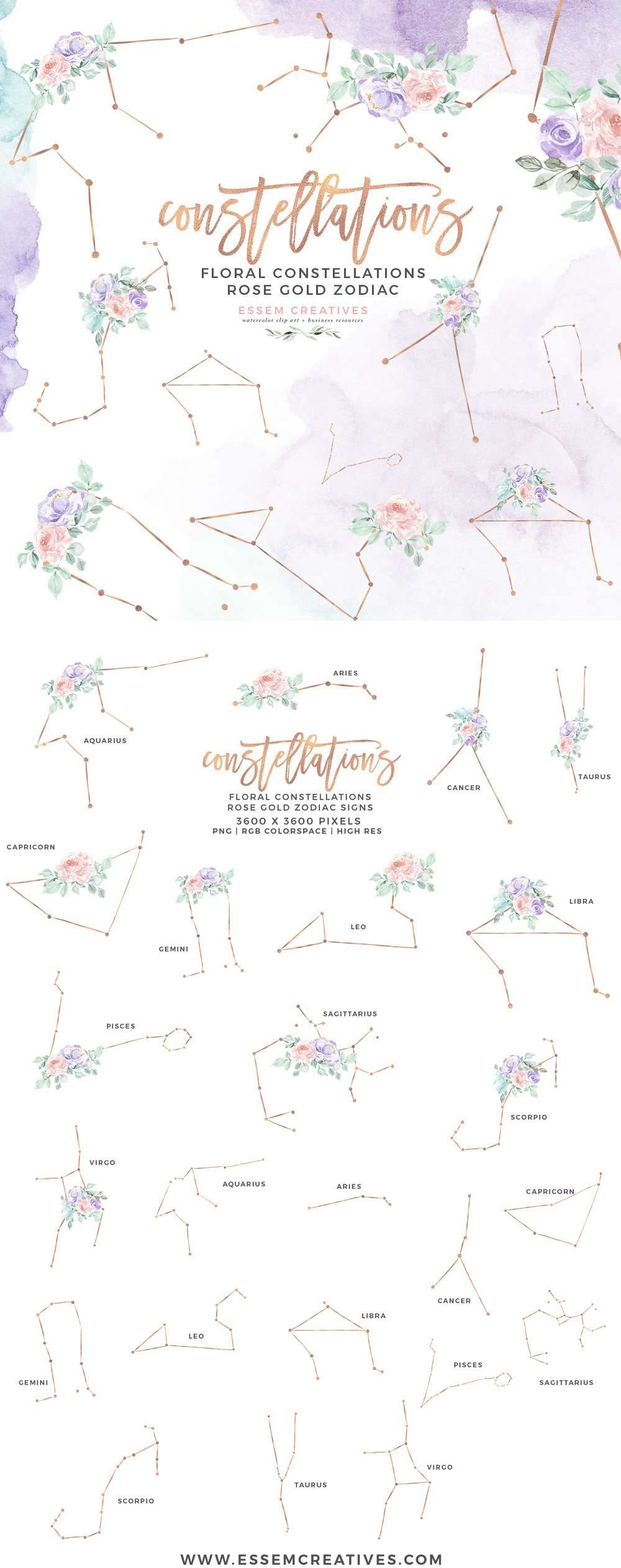 Floral Zodiac Sign Constellation Clipart Astrology Print for Birthday Card Invite Baby Shower ...