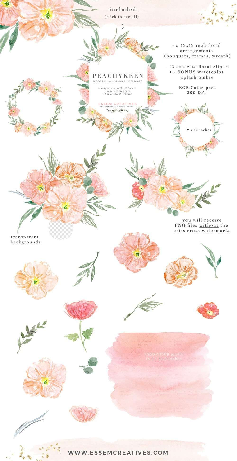 Blush Pink Watercolor Flowers Clipart, Blush And Sage