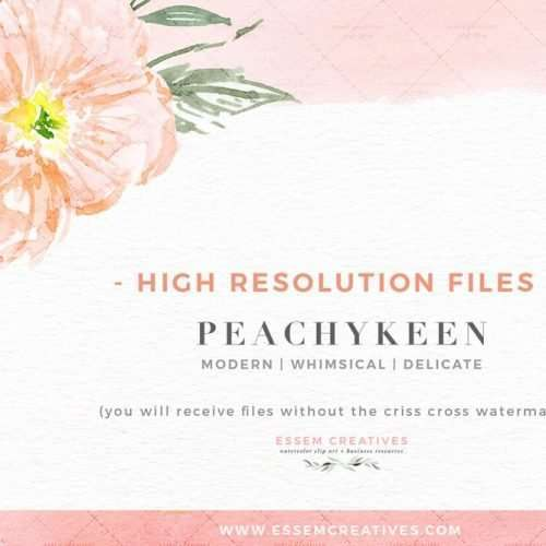 Blush Pink Watercolor Flowers Clipart, Poppies Clipart, Blush and Sage Floral Border Bouquet Frame Graphics, Floral Watercolor Wedding Invitation 2019 2020 2021, Save the Date Card, Birthday Party Invitations, Girl Baby Shower Decor, Bridal Shower Party Invitations Games, Feminine Logo Branding Blog Web Design, Social Media, Blush Peach Cream Sage Flower Graphics for Fabric, Scrapbooking, Planner Clipart, Digital Planning, Wall Art Print #weddinginvitations #floralwatercolor #watercolorgraphics