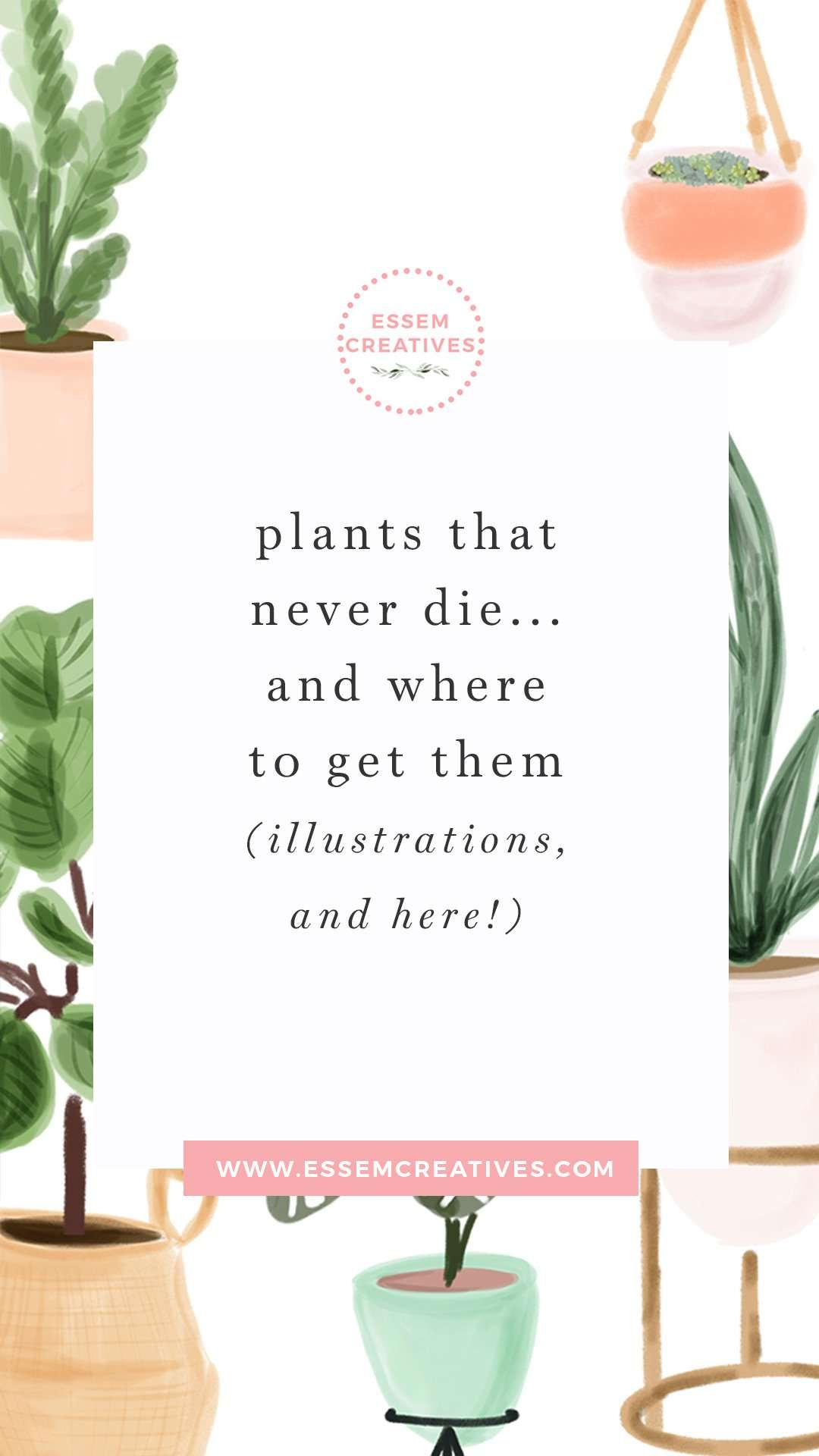 House Plants That Never Die Indoor Plant Illustrations Essem Creatives Watercolor Clipart Business Branding