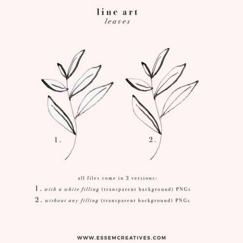 LINE ART LEAVES is a set of black and white digital hand drawn botanical illustrations and drawings. This kit contains greenery branches leaves foliage like eucalyptus, rosemary, olive. These have been hand drawn in a dainty, minimal and classy style, with tonal variations. These are perfect for those with a delicate sense of taste and aesthetics. These will work great in paper stationery designs, logo & branding projects, planner accessories, botanical wall art prints and more. #illustration