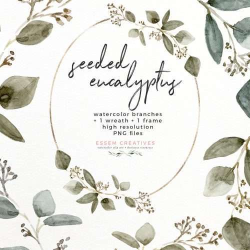 Seeded Eucalyptus Watercolor Leaves Clipart Graphics with Transparent Background | Watercolor eucalyptus leaves and branches clip art available as an instant digital download. These are perfect for eucalyptus and greenery wedding invitations, birthday party invites, save the date card, logo & branding designs, web design, blog planner, planner stickers, digital planning, scrapbooking, card making, stationery, party decor. Click to see>> #eucalyptus #illustration #clipart #watercolor