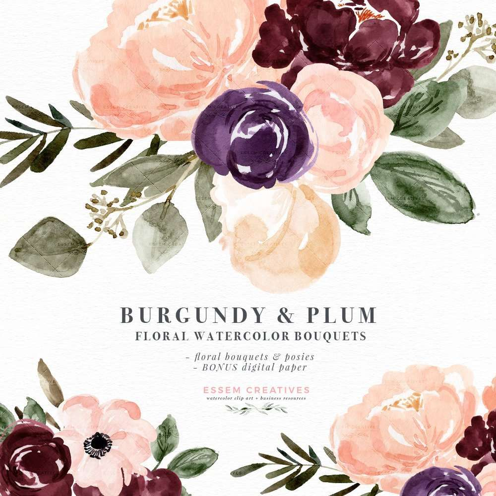 Burgundy Plum Floral Watercolor Clipart Blush Burgundy Watercolor