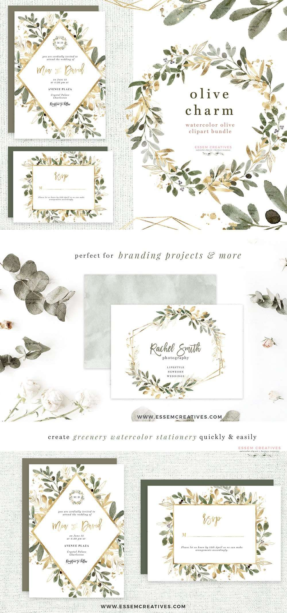 watercolor olive branch clipart  olive leaves leaf clip
