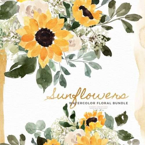 Watercolor Sunflowers Baby's Breath Floral Clipart Painting PNG Background, Rustic Yellow Flowers