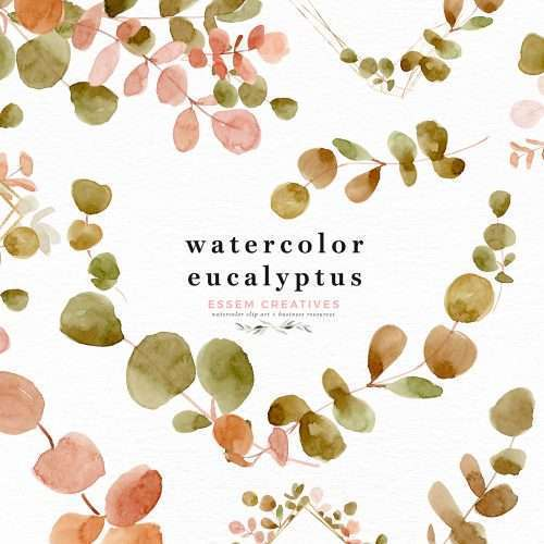 Watercolor Eucalyptus Branches Wreath Leaf Clipart PNG Silver Dollar Greenery Botanical Illustrations Border Frame | watercolour wedding invitations, save the date card, gender reveal party invites, gender neutral baby shower invitations, posters flyers, scrapbooking resources, surface pattern illustration, digital planner stickers, flower logo & brand design, nursery decor, photography backdrop, card borders | Click to see more>>