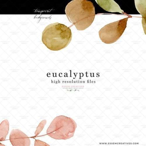 Watercolor Eucalyptus Branches Wreath Leaf Clipart PNG Silver Dollar Greenery Botanical Illustrations Border Frame   watercolour wedding invitations, save the date card, gender reveal party invites, gender neutral baby shower invitations, posters flyers, scrapbooking resources, surface pattern illustration, digital planner stickers, flower logo & brand design, nursery decor, photography backdrop, card borders   Click to see more>>