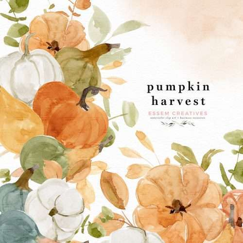 Pumpkin Harvest Floral Clipart, Watercolor Fall Thanksgiving Border Frame for Invitations PNG | Floral watercolour wedding invitations, save the date card, gender reveal party invites, gender neutral baby shower invitations, posters flyers, scrapbooking resources, surface pattern illustration, digital planner stickers, flower logo & brand design, nursery decor, photography backdrop, card borders | Click to see more>>